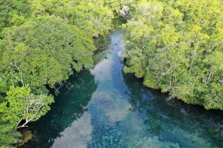 A nascente do rio Olho D'Água, protegida por uma RPPN - Reserva Particular do Patrimônio Natural, é o local onde inicia-se o passeio de flutuação no Recanto Ecológico Rio da Prata, atrativo localizado em Jardim (MS), município que integra a região da Serra da Bodoquena.